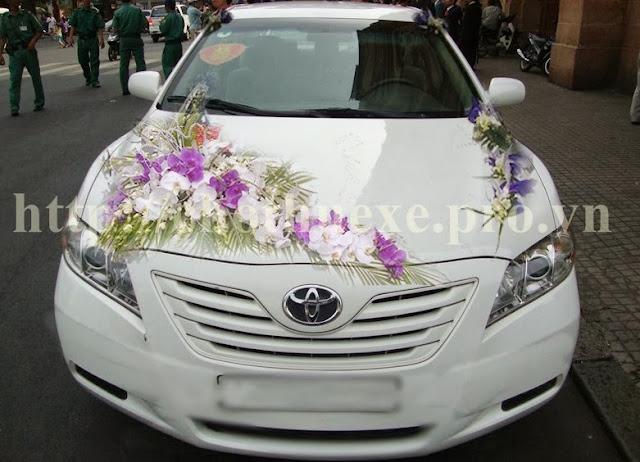 Cho thuê xe cưới Camry màu trắng