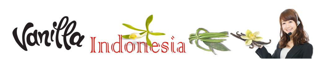 BUSINESS VANILLA INDONESIA