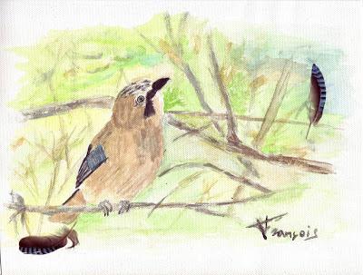 Arrendajo (Garrulus glandarius - Jay ) Acuarela sobre lienzo de algodón