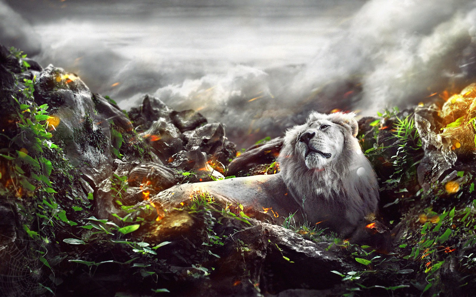 Best Wallpaper Lion Facebook - Lion+in+Jungle+3D+HD+Wallpapers+images+photos+pictures+gallery  Gallery_45575.jpg