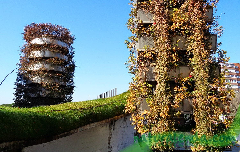 estructuras vegetales