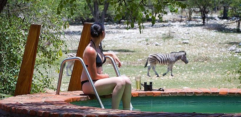 Andersson's Camp Etosha Park Namibia