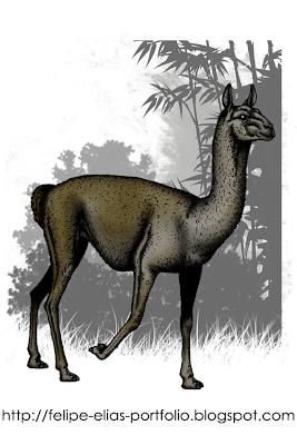 camellos prehistoricos de Argentina Palaeolama