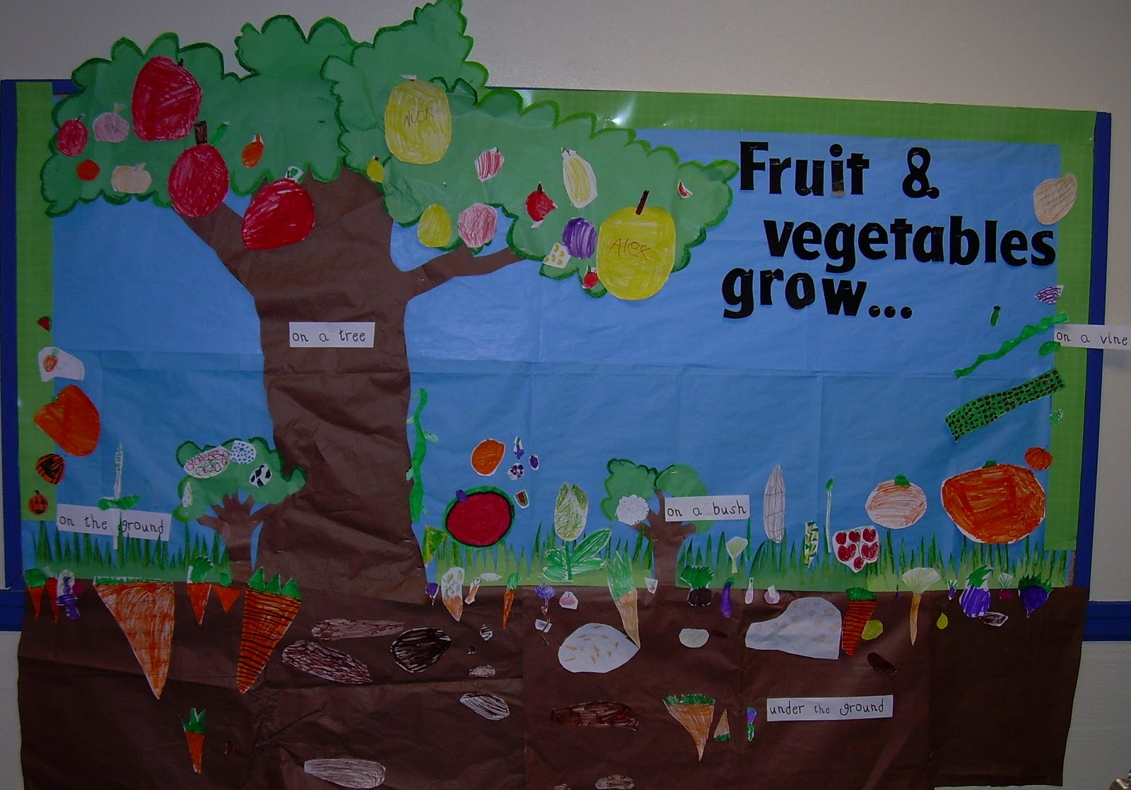 Classroom Garden Ideas ~ Sarah s first grade snippets plant bulletin board