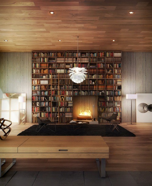 library interior design ideas