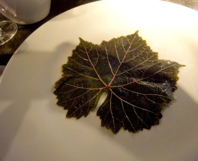 Vine leaf for Greek Dolmade
