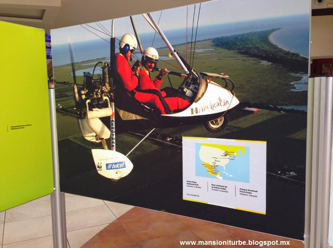 Fotografías de la Exposición el Viaje de la Mariposa Monarca