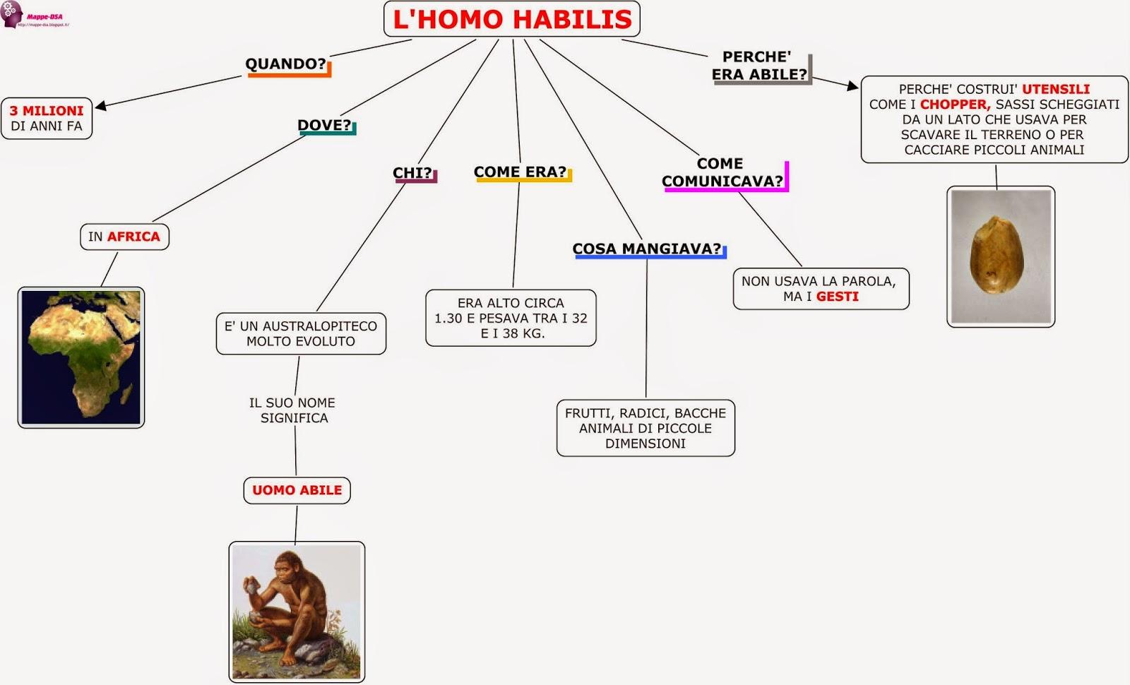 mappa dsa storia preistoria homo habilis