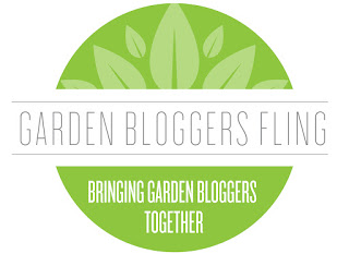 Garden Bloggers Fling