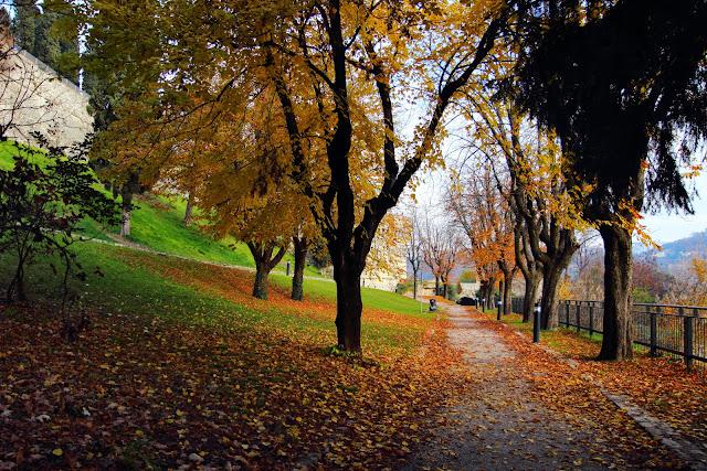 Sentiero sotto gli alberi autunnali al Castello di Brescia