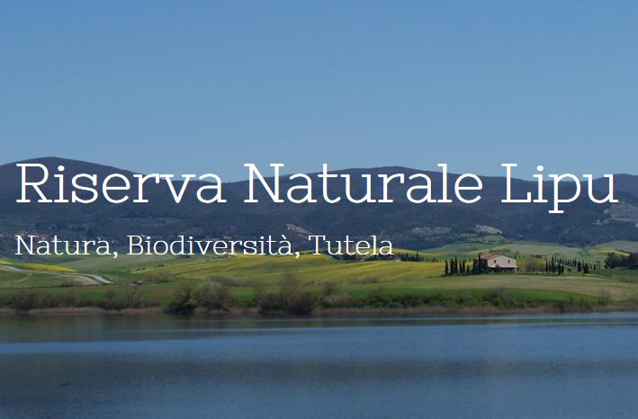 Lipu Riserva naturale Lago di Santa Luce