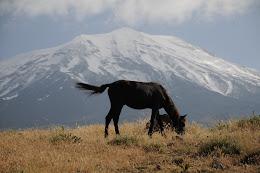 Ağrı Dağı 3200m