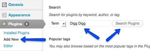 Search Digg Digg