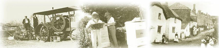Genealogy: Beyond the BMD