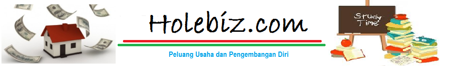 HOLEBIZ.COM