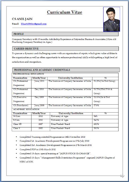 top 10 cv formats top 10 resume formats top 10 professional