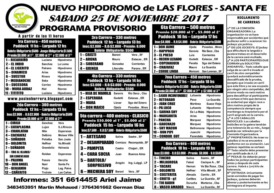 LAS FLORES 25 - PROGRAMA