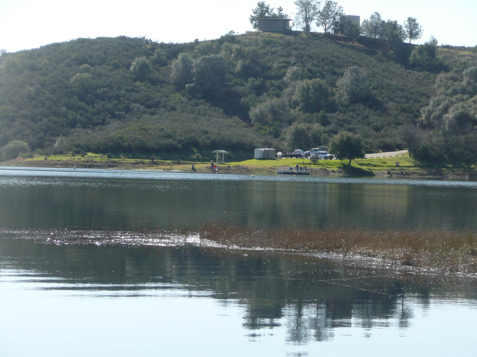 northern california trout shoreman hits lake pardee