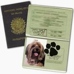 Passaporte para animais domésticos