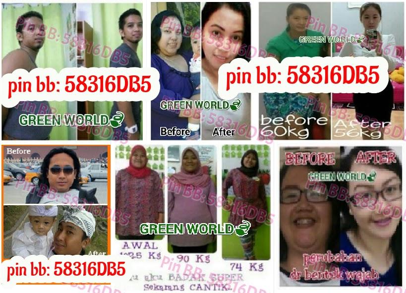 Jual World Slimming Capsule Ada Bpom Resmi Pin Bb 58316db5
