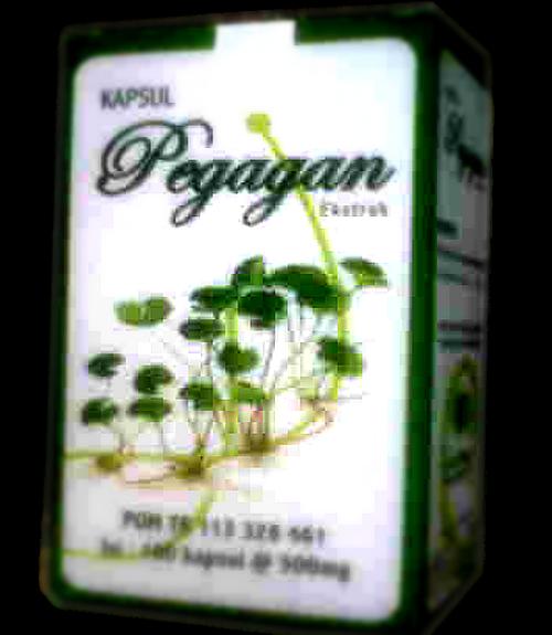 Khasiat Kapsul Pegagan