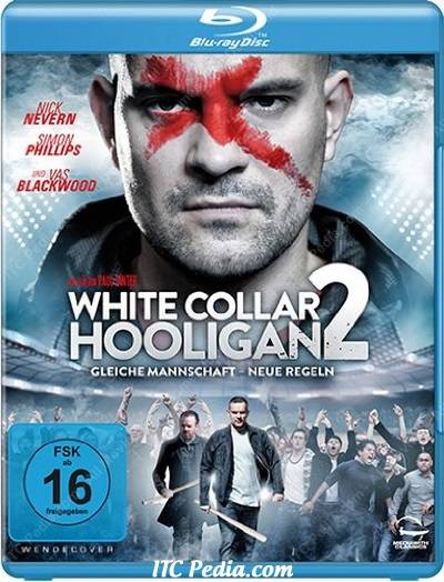 White Collar Hooligan 2 (2013) Movie Download