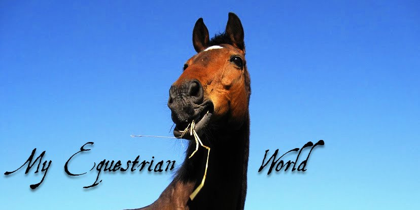 My Equestrian World