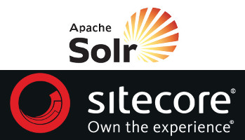 solr error opening new searcher
