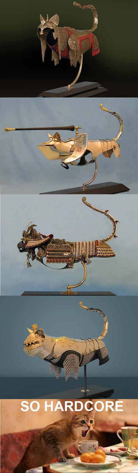 Epic Pet Armors - So Hardcore