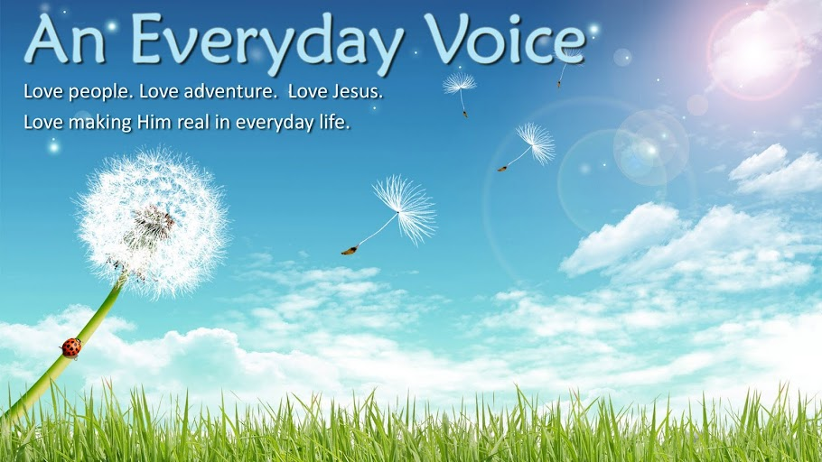 An Everyday Voice