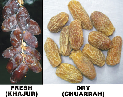 Health Benefits of Khajur