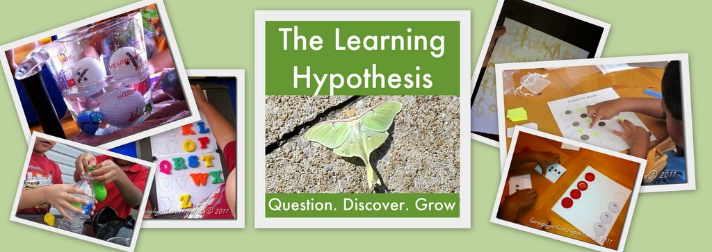 The Learning Hypothesis