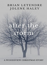 After the Storm (A Woodsview Xmas Story)