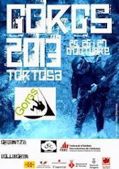 GORGS 2013