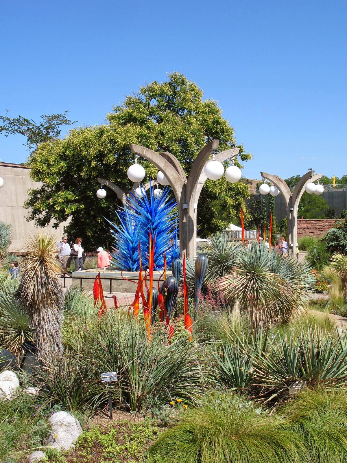 Miss Bloomers Chihuly And The Denver Botanical Gardens