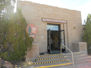 petrified forest national park museum