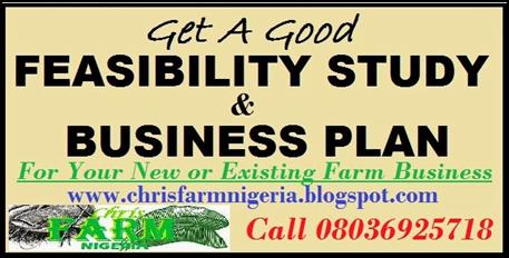 Piggery business plan in Nigeria