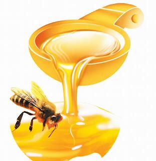 كيف تعرف هل عسل النحل اصلي ام مغشوش ؟؟