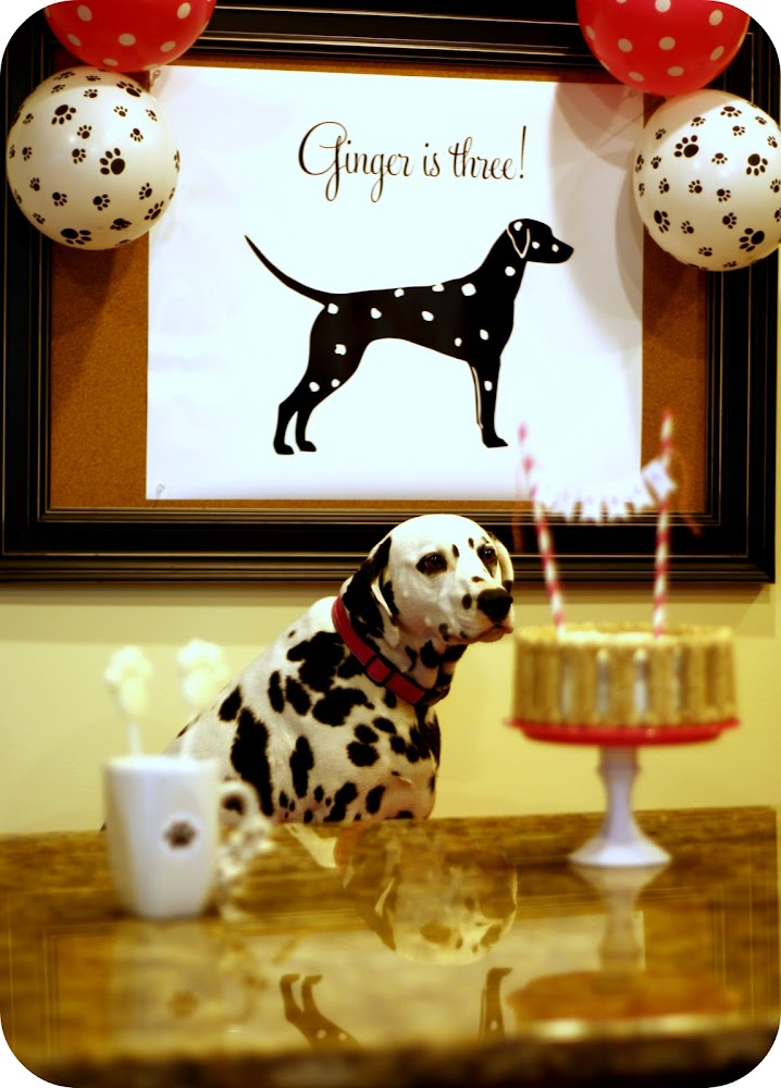 Dog Birthday Cake Inspiration