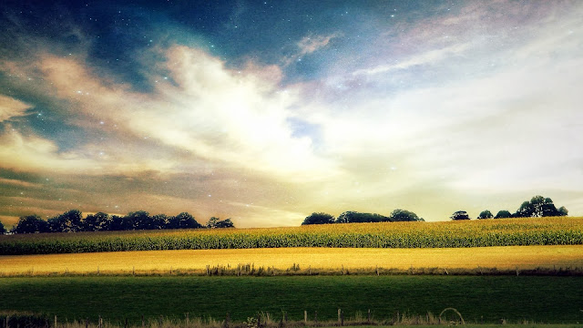 Star Sky Awesome Fields HD Wallpapers