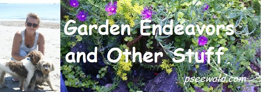 Garden Endeavors and Other Stuff