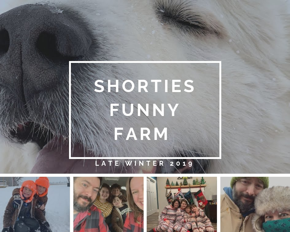shorties funny farm