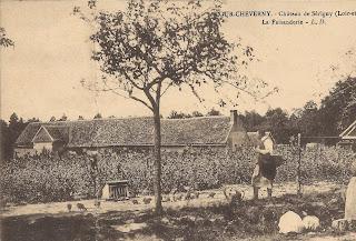 Château de Sérigny - La faisanderie - Cour-Cheverny