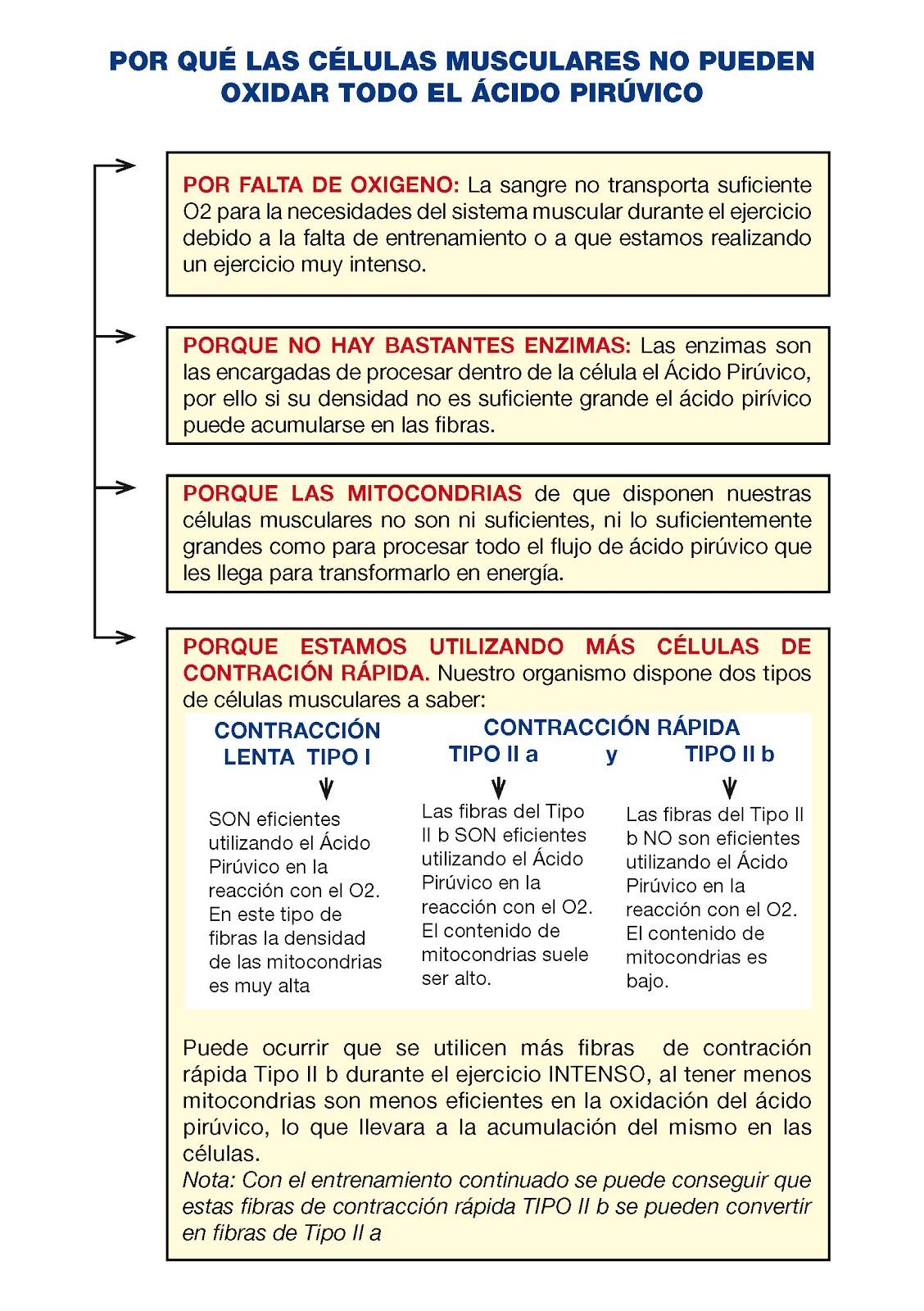 sintomas de alto nivel de acido urico sintomatologia del acido urico alto medidor acido urico mexico