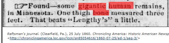 1860.07.25 - Raftsman's Journal