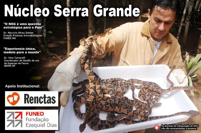 Núcleo Serra Grande