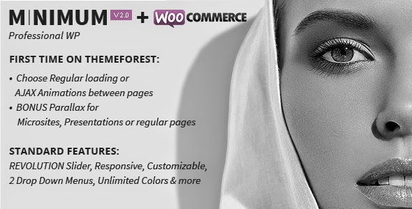 MINIMUM v2.2.2 - Professional WordPress Theme