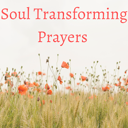 Need daily prayer? Visit my Soul Transforming Prayers Page!