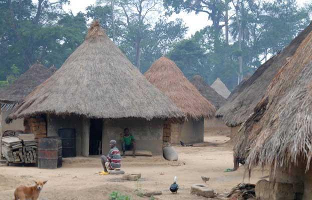 Mount Nimba Strict Nature Reserve Heritage