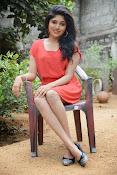 Samyuktha Hornad Glam pics-thumbnail-5